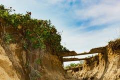 Érosion dunaire primaire photographie stock