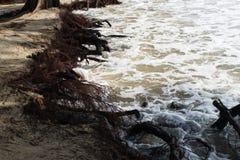 Érosion hydrique photographie stock libre de droits