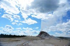 Éruption du geyser blanc de dôme chez Yellowstone Photos libres de droits