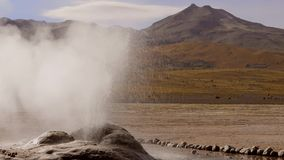 Éruption du geyser en vallée de geyser d'EL Tatio, 4320 mètres au-dessus de niveau de la mer Une des attractions touristiques pri banque de vidéos
