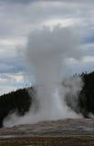 Éruption du vieux geyser fidèle, parc national de Yellowstone image libre de droits