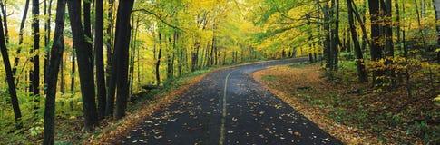 Ésta es la reserva del estado de Greylock en otoño Hay un camino ese los vientos a través del bosque hasta la derecha de la image Fotos de archivo libres de regalías