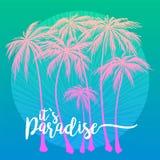 Éste es el cartel del paraíso, sistema de la silueta rosada de las palmeras en un fondo azul Ejemplo del vector, elemento del dis libre illustration