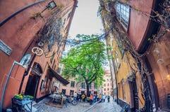 Éstocolmo, Suécia - 16 de maio de 2016: Cidade velha em Éstocolmo Gamla stan lente de fisheye da perspectiva da distorção imagem de stock royalty free