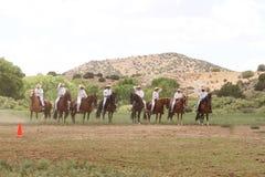 Été équin Fest de Las Golondrinas de démonstration. Photographie stock libre de droits
