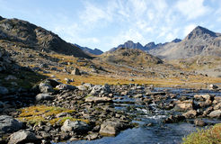 Été au Groenland Photos libres de droits