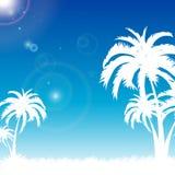 Été bleu de Palm Beach Photo libre de droits