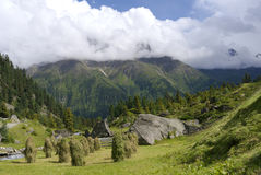 Été d'Alp Tirol Austria Nature Scenic Photographie stock