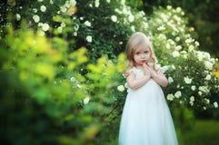 Été d'enfant Photo libre de droits