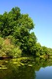 été d'horizontal de lac de beauté Images stock