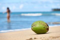 été d'horizontal de noix de coco de plage Photo libre de droits