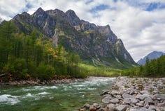 Été dans les montagnes Image stock