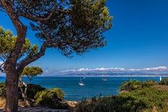 Été dans Majorca Photos libres de droits