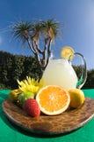 Été de citronnade Image libre de droits