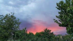 Été de coucher du soleil avec la grande vue Image stock