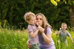 Été de famille - graines de soufflement de pissenlit Images stock