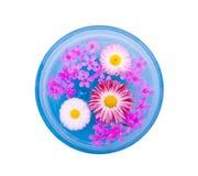 été de flottement de fleurs Photo stock