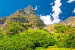 Été de montagne Jour ensoleillé Forêt et pré verts Photographie stock