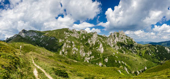 Été de panorama de montagnes carpathiennes, Roumanie Photographie stock