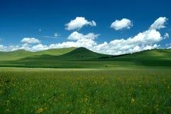Été de prairie Image libre de droits