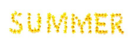 ÉTÉ de Word écrit avec les fleurs jaunes Images stock