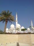 Été du soleil de paumes des EAU Abu Dhabi Sheikh Mosque Photo stock