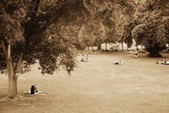 Été en Europe - sièste d'après-midi en parc à Vienne Photographie stock