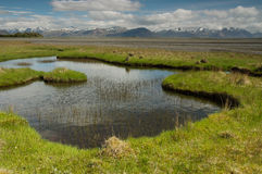 Été en Islande Photos libres de droits