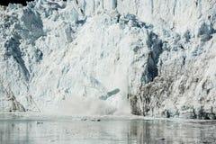 Été en parc national de baie de glacier photo stock