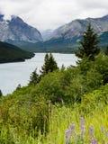 Été en parc national de glacier Photographie stock libre de droits