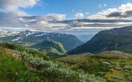Été en vallée des montagnes de la Norvège Image libre de droits