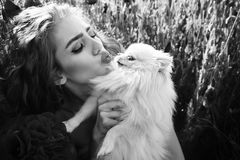 Été et amour fille dans le domaine du clou de girofle avec le chien du spitz Photographie stock