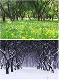 Été et hiver Photographie stock