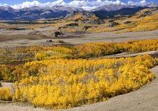 Été indien de la Saint-Martin dans le Colorado Image libre de droits