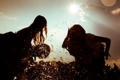 Été insousiant - amis en silhouette Images stock