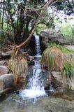 Été, l'eau, cascade, nature, paysage Image stock