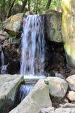 Été, l'eau, cascade, nature, paysage Photos libres de droits