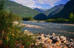 Été par la rivière Kitoy Photos libres de droits