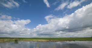 Été par le lac Photo libre de droits