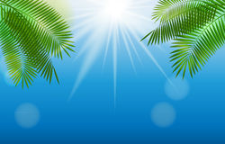 Été Sunny Natural Background Vector illustration stock