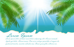 Été Sunny Natural Background Vector illustration libre de droits