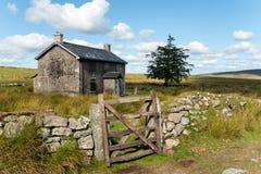 Été sur Dartmoor Images libres de droits