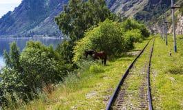 Été sur le chemin de fer de Circum-Baikal image libre de droits