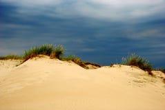 Été sur les dunes images libres de droits