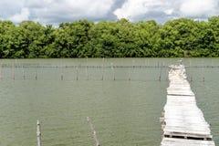 Établissement d'incubation de fruits de mer Photographie stock libre de droits