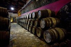 Établissement vinicole à Porto Image stock