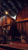 Établissement vinicole célèbre de Salta en Argentine Image stock