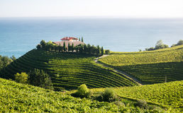 Établissement vinicole dans Eitzaga, pays Basque, Espagne photos stock