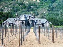 Établissement vinicole dans le napa Photos stock