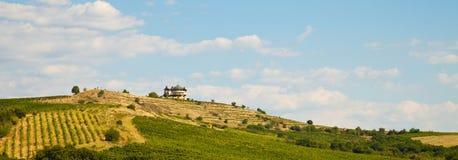Établissement vinicole de montagne Images libres de droits